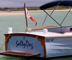 Salty-Dog-Noosa3.jpg