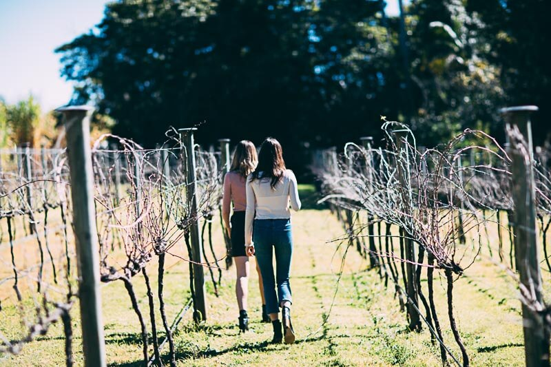 Witches Falls Winery at Mount Tambourine in the Gold Coast hinterland